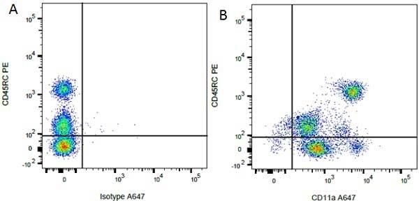 CD11a Antibody | WT.1 gallery image 3
