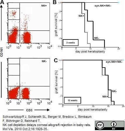CD161 Antibody | 10/78 gallery image 2