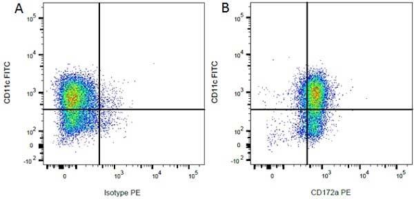 CD172a Antibody | ED9 gallery image 9