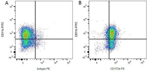 CD172a Antibody   ED9 gallery image 9