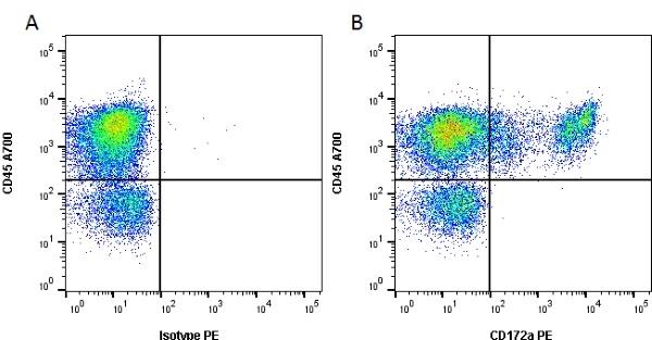 CD172a Antibody   ED9 gallery image 1