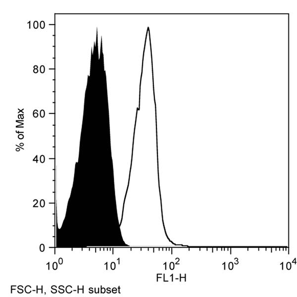 CD1d Antibody | WTH1 gallery image 2