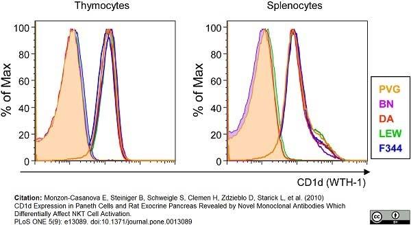 CD1d Antibody | WTH1 gallery image 3