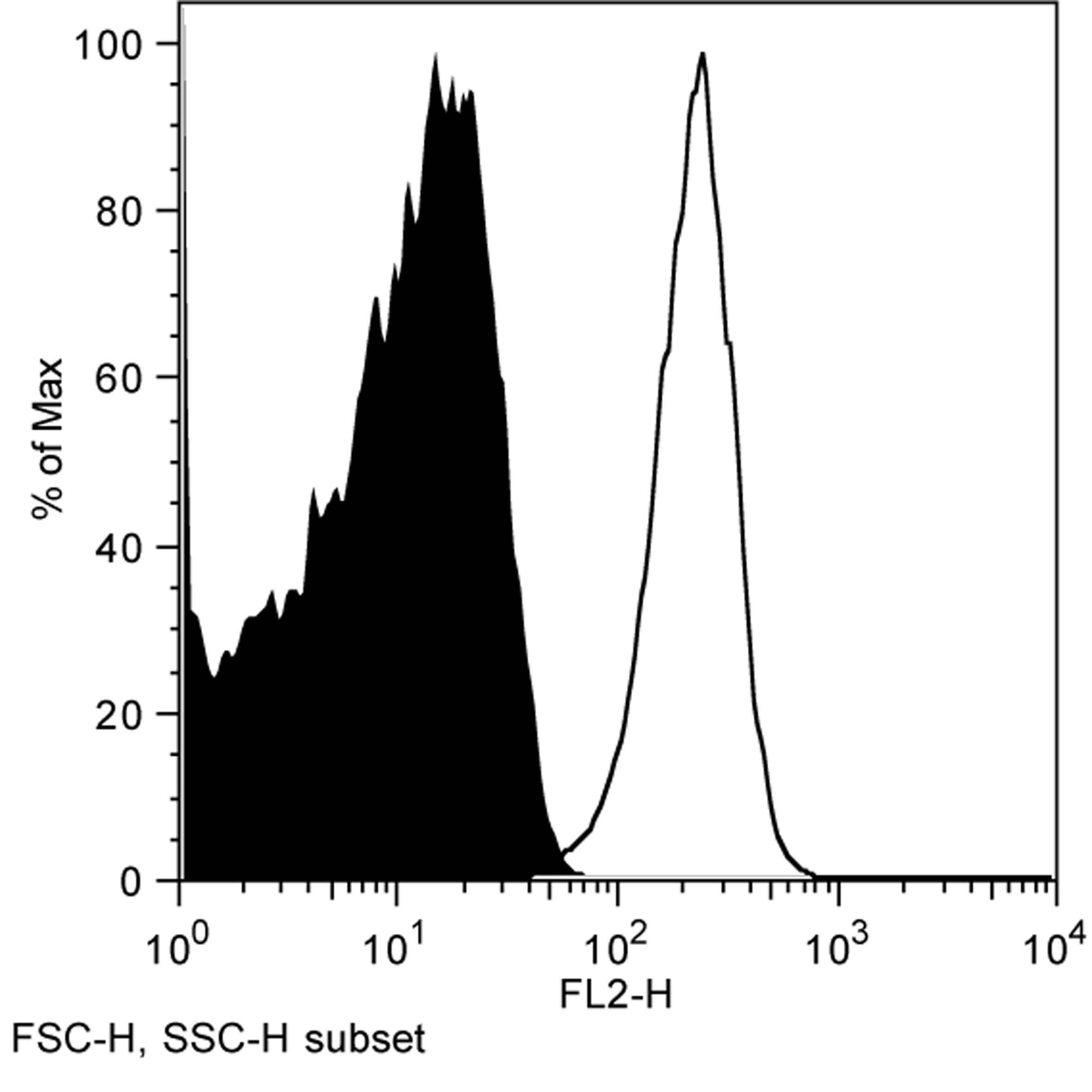CD1d Antibody | WTH2 gallery image 1