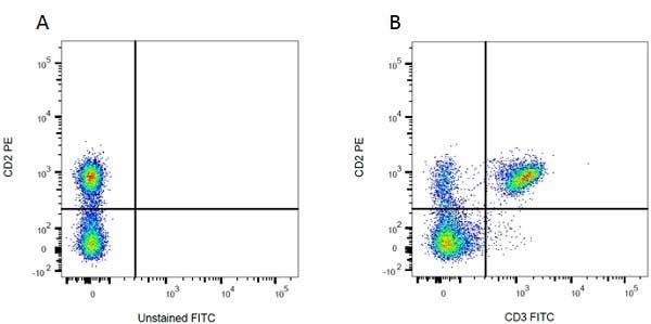CD2 Antibody | OX-34 gallery image 12
