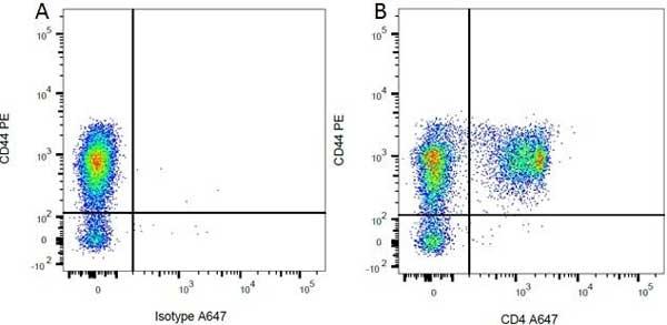 CD4 Antibody | OX-35 gallery image 2
