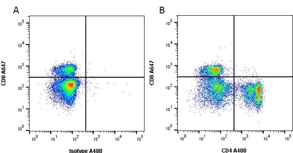 CD4 Antibody | W3/25 gallery image 1