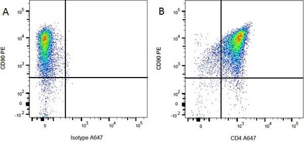 CD4 Antibody | W3/25 gallery image 8