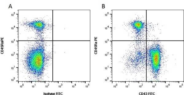 CD43 Antibody   W3/13 gallery image 1