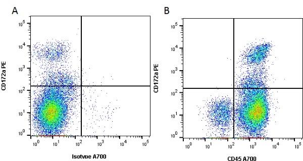 CD45 Antibody | OX-1 gallery image 2