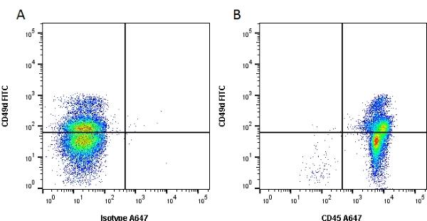 CD45 Antibody | OX-1 gallery image 3