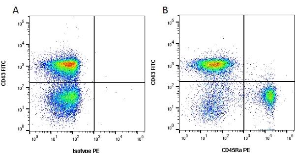 CD45 Antibody | OX-1 gallery image 1