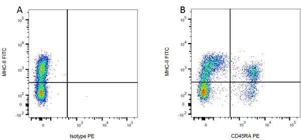 CD45RA Antibody | OX-33 gallery image 4
