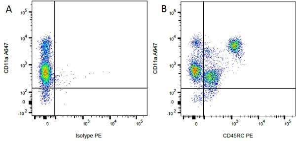 CD45RC Antibody   OX-22 gallery image 4