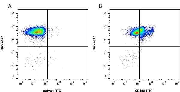 CD49d Antibody | MRalpha4-1 gallery image 1