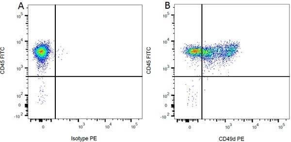 CD49d Antibody | MRalpha4-1 gallery image 6