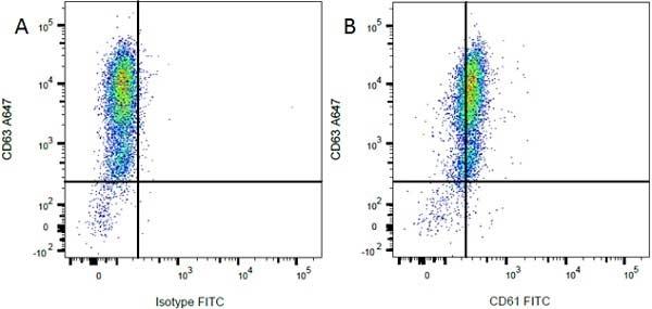 CD61 Antibody | F11 gallery image 3