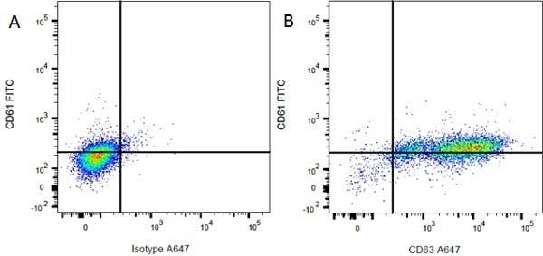 CD61 Antibody | F11 gallery image 2