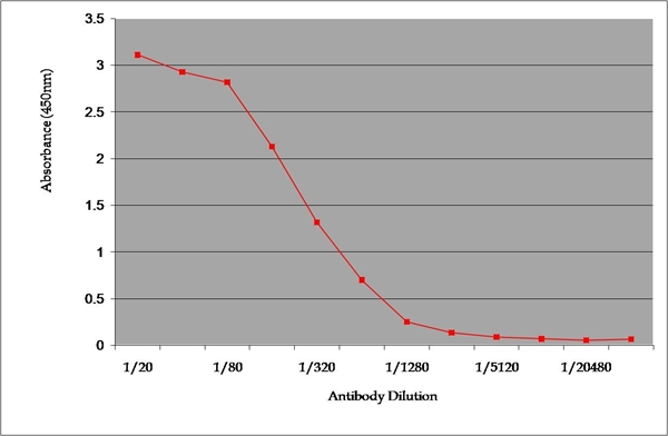 IgG2a Antibody | 9345 gallery image 1