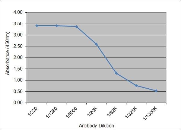 Luteinizing Hormone Antibody | 176.5E7 gallery image 1