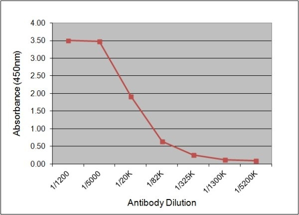 Luteinizing Hormone Antibody | 176.8G2 gallery image 1