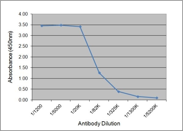 Luteinizing Hormone Antibody | 176.9B7 gallery image 1