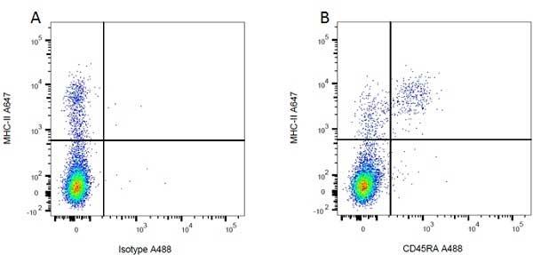 MHC Class II H-2I-Ak/s Antibody | OX-6 gallery image 3