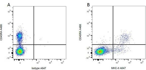 MHC Class II H-2I-Ak/s Antibody | OX-6 gallery image 2