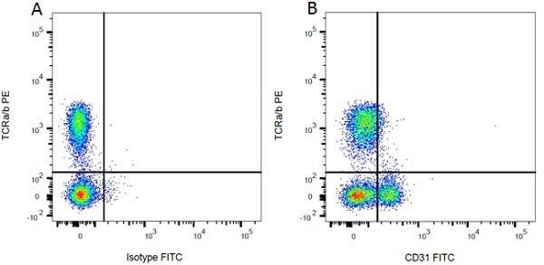 TCR Alpha/Beta Antibody | R73 gallery image 3