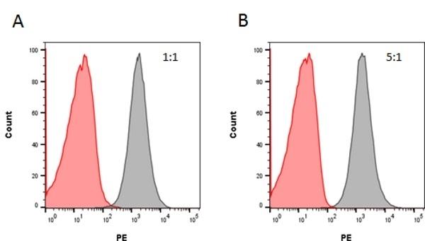 Rituximab Antibody | AbD02844 gallery image 1