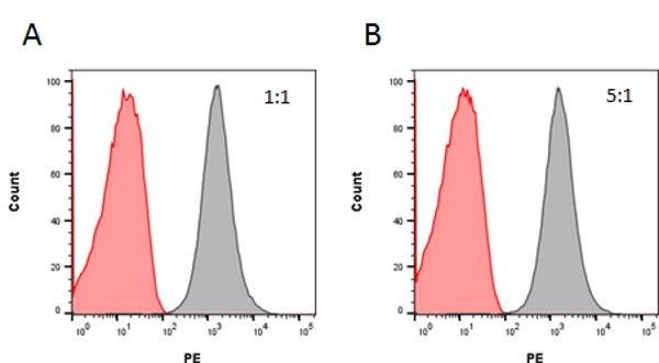 Rituximab Antibody | AbD18423_hIgG1 gallery image 3