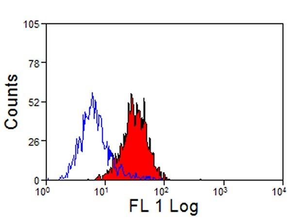 CD14 Antibody   VPM67 gallery image 1