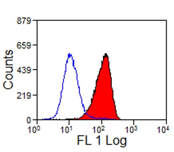 CD16-Like Antibody | VPM64 gallery image 1