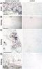 CD230 (Prpsc) Antibody | 2G11 thumbnail image 2