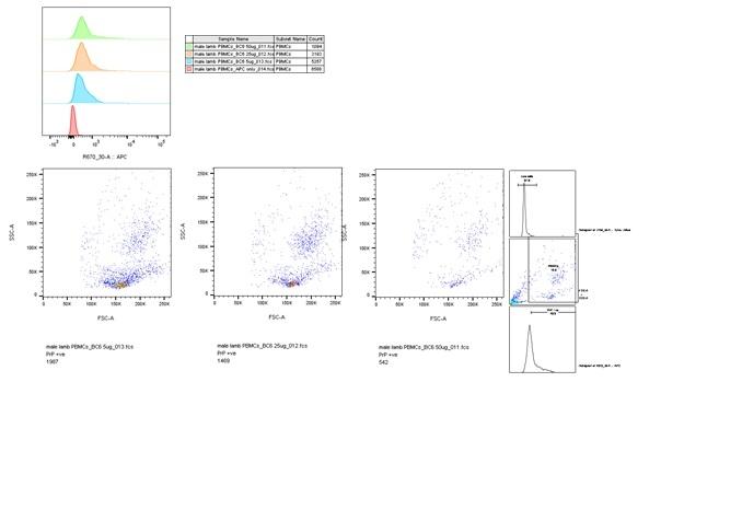 CD230 Antibody | ROS-BC6 thumbnail image 3
