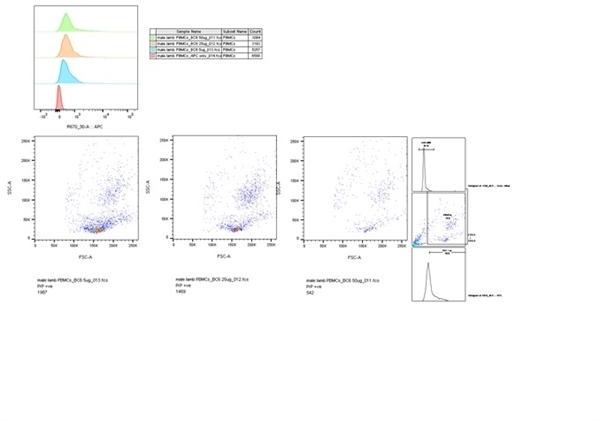 CD230 Antibody | ROS-BC6 gallery image 3