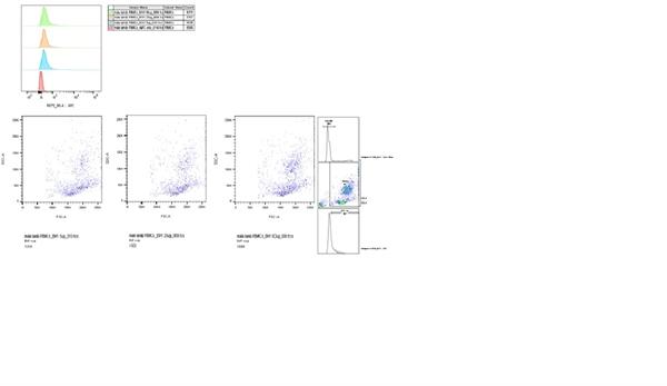 CD230 Antibody | ROS-BH1 gallery image 1