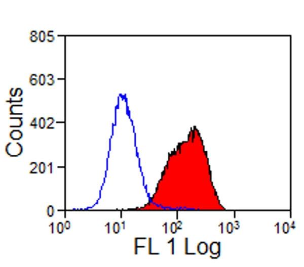 CD32-Like Antibody | VPM63 gallery image 1