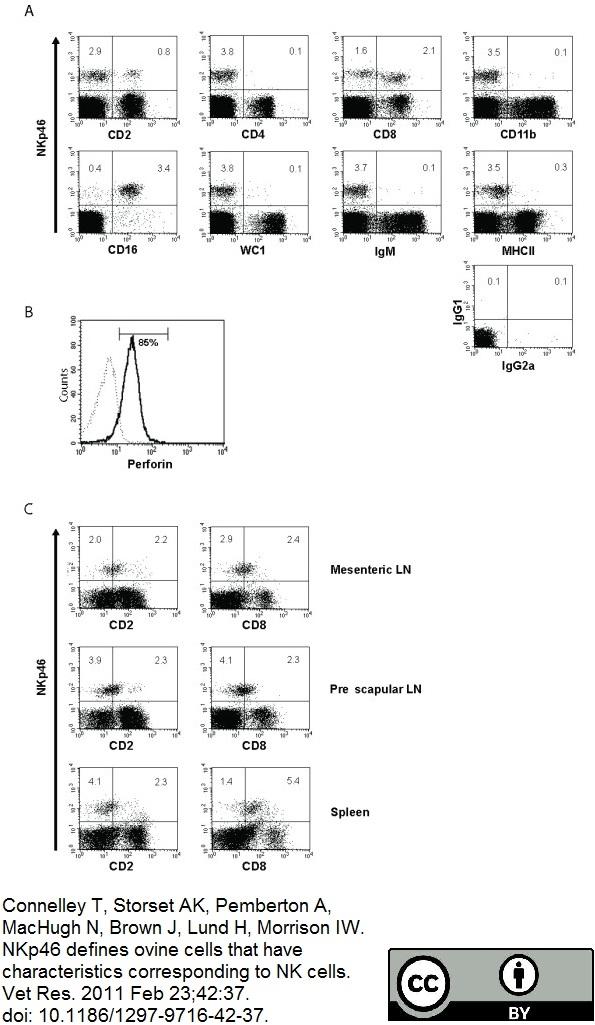 CD4 Antibody   44.38 gallery image 3