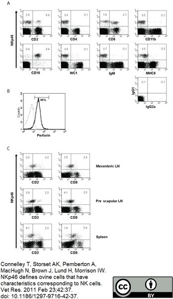 CD4 Antibody | 44.38 gallery image 3