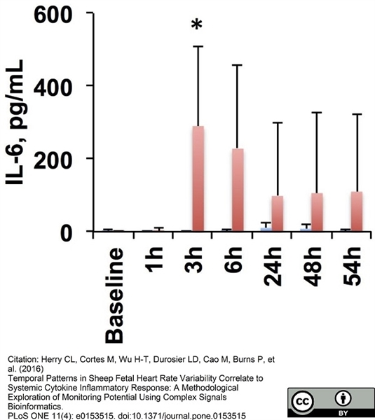 IL-6 Antibody | 4B6 gallery image 3