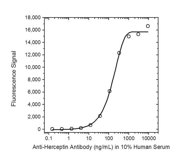 Trastuzumab Antibody | AbD16712_hIgG1 gallery image 2