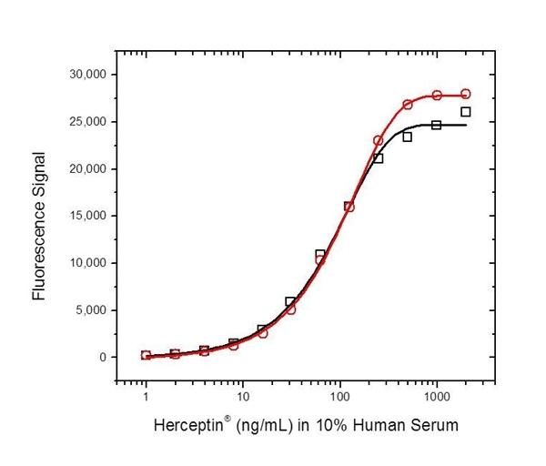 Trastuzumab Antibody | AbD16712_hIgG1 gallery image 3