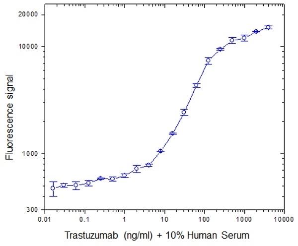 Trastuzumab Antibody | AbD18018 gallery image 2