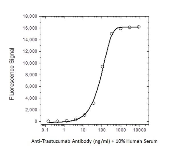 Trastuzumab Antibody | AbD18018_hIgG1 gallery image 2