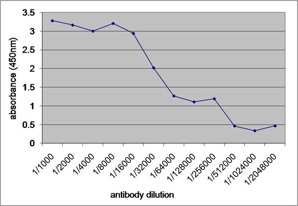 V5-Tag Antibody | SV5-Pk1 gallery image 1