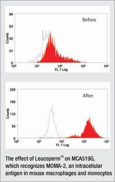 Leucoperm recognising M0MA-2 antigen